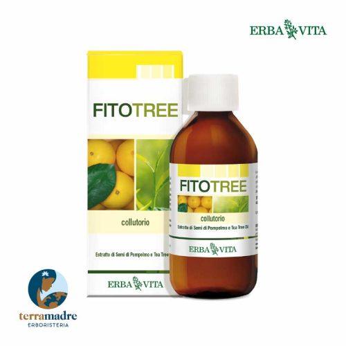 Erba Vita - Fitotree - Colluttorio