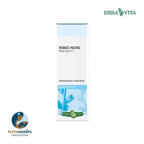 Erba Vita - Ribes Nero - Gemmoderivato